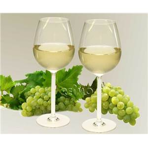 LOT DE 2 VERRES A VIN polycarbonate 300ml
