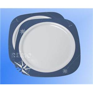LOT DE 2 ASSIETTES PLATES - POLARSTERN